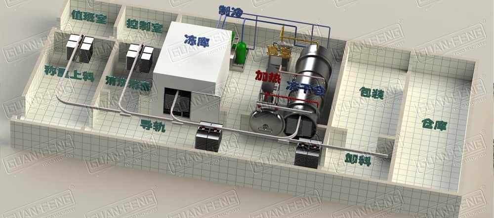 Layout Of Vacuum Freeze Drying Equipment #1
